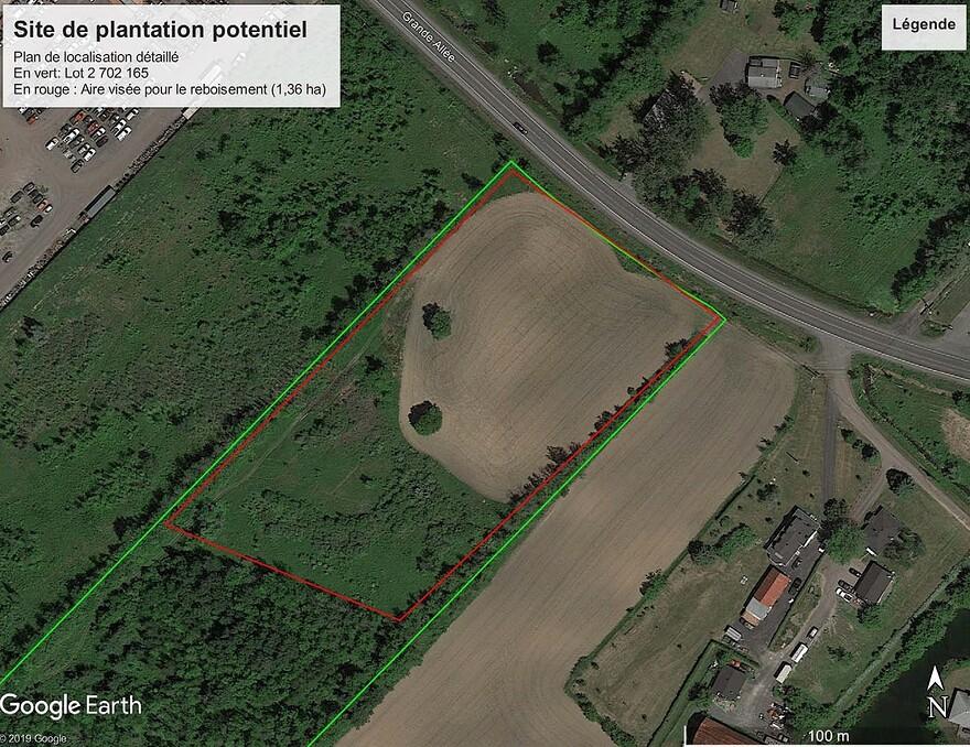 Construction du REM 3000 arbres seront plants au Bois de Brossard